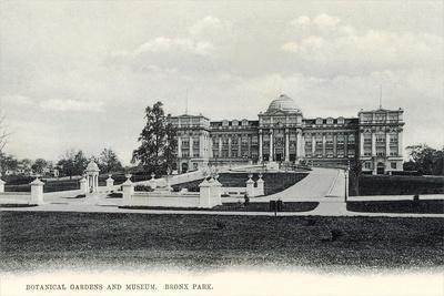 Botanical Gardens and Museum, Bronx Park