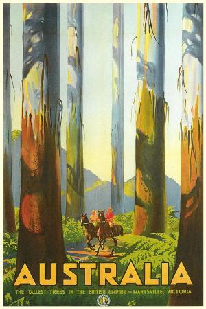 Australia Travel Poster, Trees