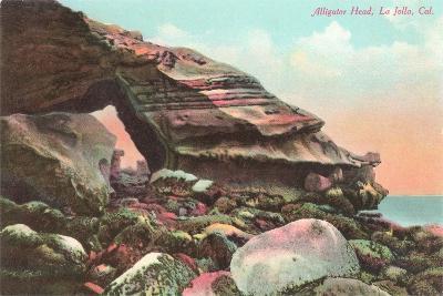 Alligator Head, La Jolla Cove