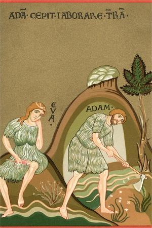 Medieval Illusttration, Adam and Eve