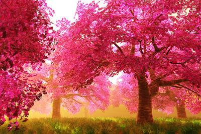 Mysterious Japanese Cherry Blossom Tree Sakura Render