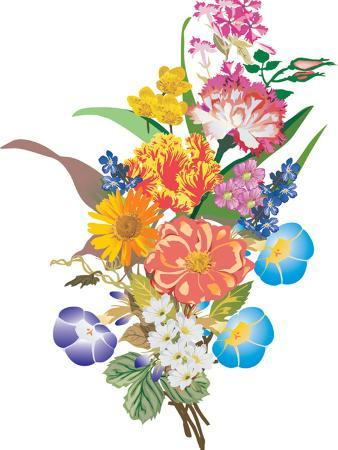 Illustration with Bunch of Different Flowers