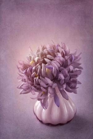 Autumn Purple Flower in a Vase