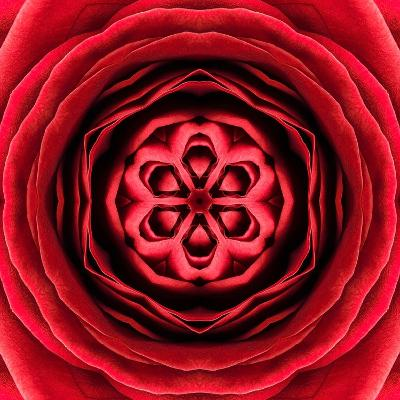 Red Concentric Flower Center: Mandala Kaleidoscopic Design