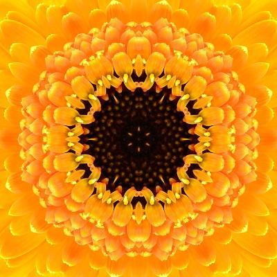 Yellow Concentric Flower Center: Mandala Kaleidoscopic Design