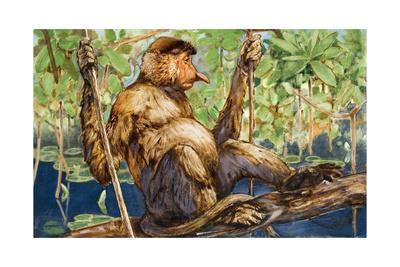 Painting of a Proboscis Monkey in a Borneo Rain Forest