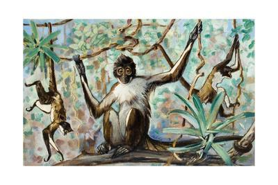 Painting of Spider Monkeys in a Forest Habitat