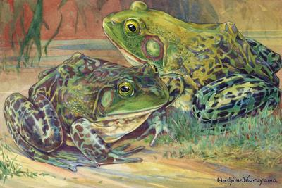 These Bullfrogs Stay Close to Water