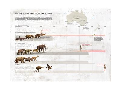 Megafauna Extinction on Australia, North and South America and New Zealand