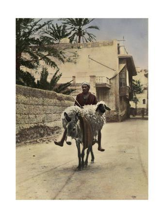 A Man and a Sheep Both Ride a Donkey Through the Streets
