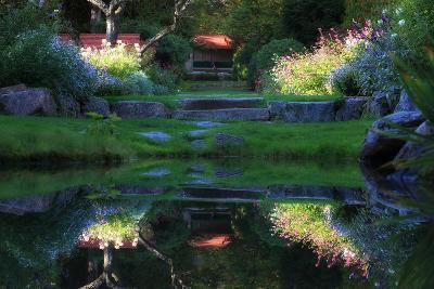 A Lush Summertime Garden in Bloom in Acadia National Park