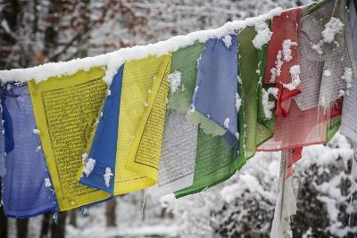Colorful Prayer Flags Hang in the Snow