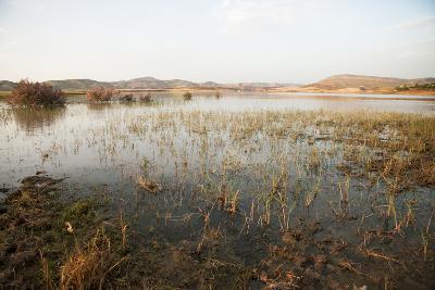 Dusk on a Small Lake Outside of Fez, Morocco