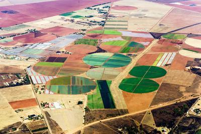 Irrigated Agricultural Crop Circles Surrounded by Dry Farmland and Pasture
