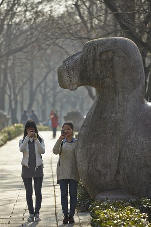A Camel Statue on an Avenue of Animal Sculptures at Mingxiaoling, the Tomb of Hongwu