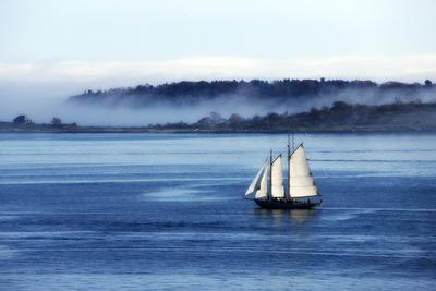 A Sailboat Cruising Casco Bay on a Foggy Morning