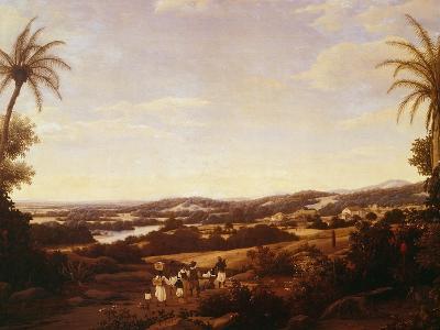 Brazilian Landscape with Plantation, Brazil