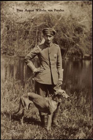 Prinz August Wilhelm Von Preußen, Uniform, Windhund