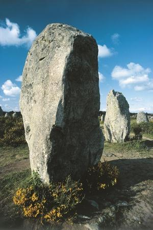 France, Brittany, Surroundings of Carnac, Prehistoric Megalithic Stone Alignments, Menhir