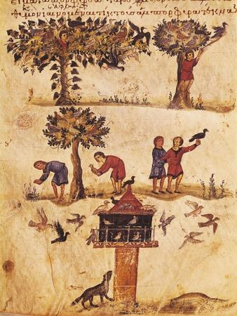 The World of Birds, Miniature from De Venatione, Greek Treatise on Hunting
