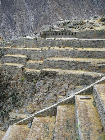 Peru, Cuzco, Urubamba, Inca Archaeological Site, Cultivation Terraces and Fortress of Sacred Valley