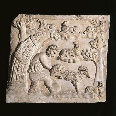 Roman Civilization, Relief Portraying Shepherd Milking Goat