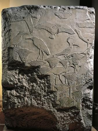 Relief Depicting Birds Among the Papyri, from Funerary Temple of Userkaf at Abusir