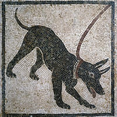 Cave Canem, Beware of Dog, Depiction of Dog on Chain