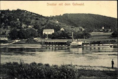Diesbar Seußlitz Nünchritz, Dampfer Bohemia,Golkwald