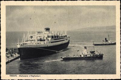 Lloyd Triestino, Dampfer Neptunia, Motonave