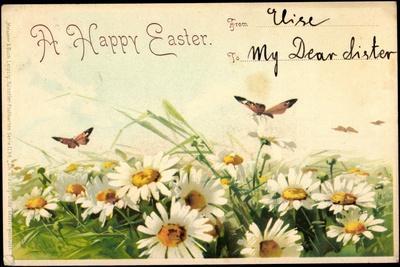 Litho Glückwunsch Ostern, Margheriten, Schmetterlinge