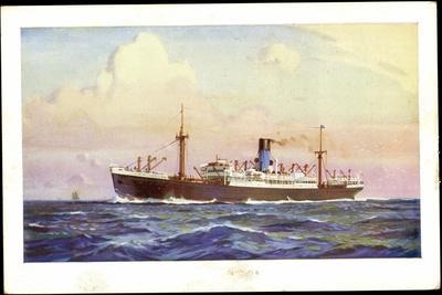 Künstler Dampfer Oceaan, Nederlandsche Stoomvaart