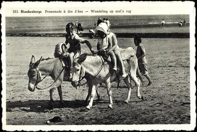 Blankenberge Westflandern, Promenade À Dos D'Âne, Kinder Auf Esel