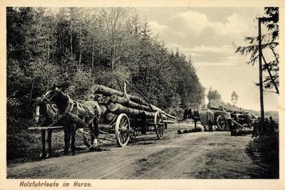 Holzfuhrleute Im Harz, Forstwirtschaft, Holzstämme, Verladen, Pferdekarren
