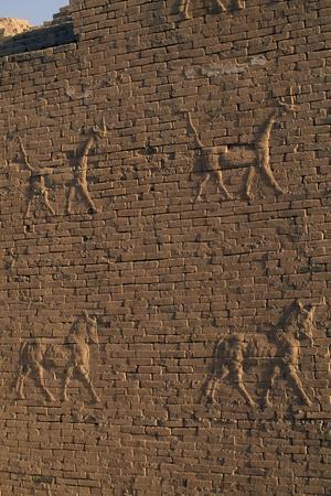 Bas-Reliefs on Walls of Babylon, Iraq