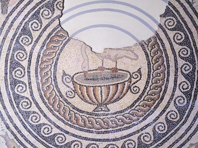 Floor Mosaic Depicting Swan