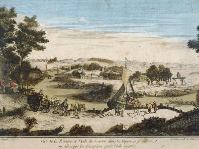 The Coast Near Kourou Where the Europeans Landed