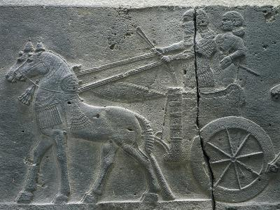 Basalt Relief Depicting the Royal Chariot, Artefact from Tiglatpileser III's Palace