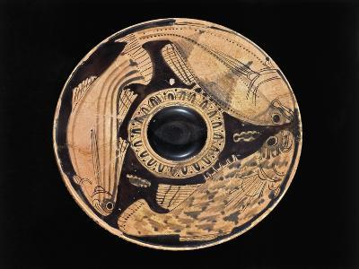 Etruscan Civilization, Red-Figure Pottery, Plate Depicting Fish, from Spina, Ferrara Province