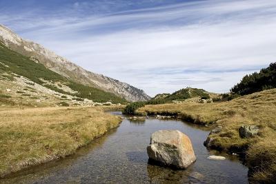 Bulgaria, Pirin Mountains, Pirin National Park, Stream with Large Stone