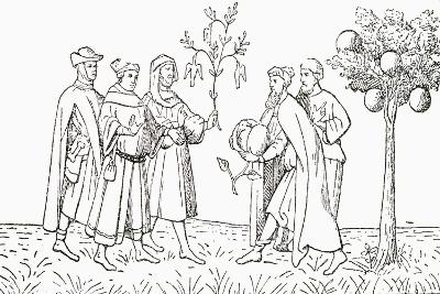 Friar Oderic of Pordenone Holding a Branch from a Tree on Which Birds Grow