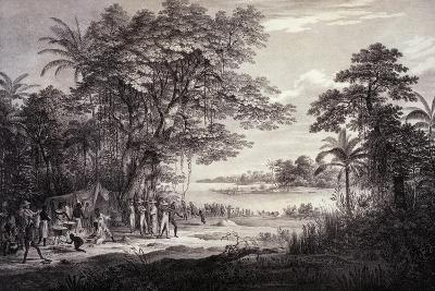 Village on Banks of Amazon River, Brazil