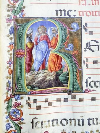 Initial, Miniature by Liberale of Verona from a Medieval Gradual
