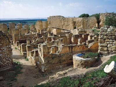 Tunisia, Carthage, Punic Dwellings on Byrsa Hill at Archaeological Site