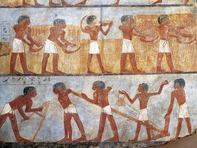 Wall Painting Depicting Sowing and Harvesting Scene, from the Tomb of Onsu at West Thebes, Close-Up