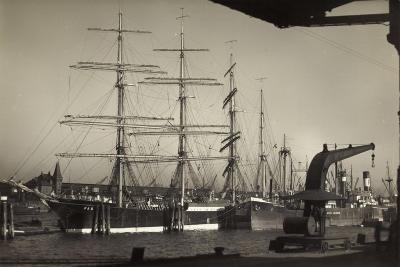 Hamburger Hafen, Viermast Bark Padua, Segelschiff