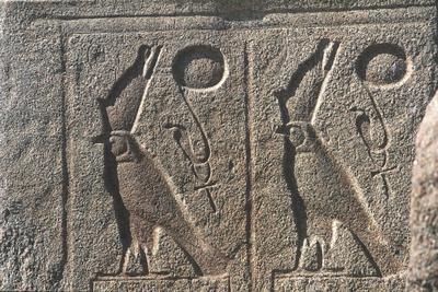 Egypt - Karnak - Temple of Amon - Hieroglyphs with Horus