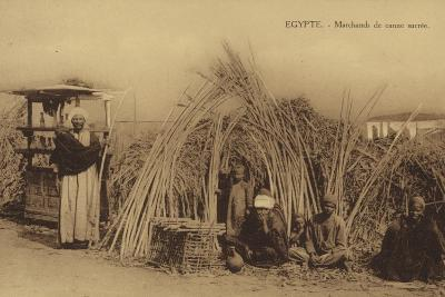Egypt - Cane Sugar Merchants