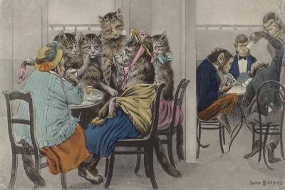 Cats Drinking Tea and Monkeys Playing Cards