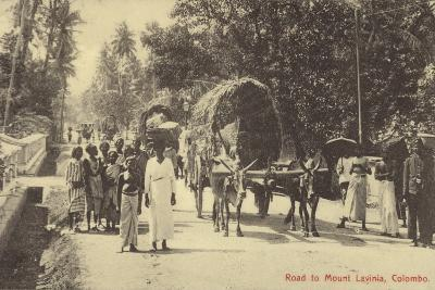 Road to Mount Lavania in Colombo